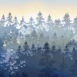 Carta_da_parati_AH001_PH_2Dusk-PineAH001_PH_3Dusk-Woodland