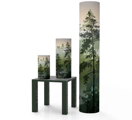 Scandinavian forest - Dawn