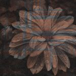 Muraia_Floral Alternative_M133PH_03