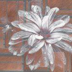 Muraia_Floral Alternative_M133PH_01